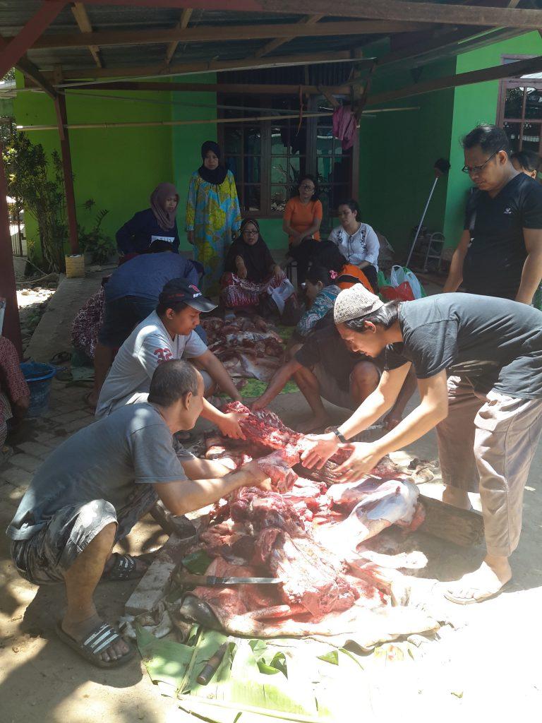 Daging qurban dari hewan sapi yang disembelih Haji Kuling, sudah dipilah-pilah untuk dibagikan ke fakir miskin (foto : Nur Terbit)